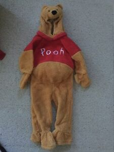 Authentic Disney Winnie The Pooh Costume Size 3-4 years Cambridge Kitchener Area image 1