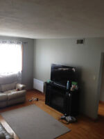 Spacious 3 bedroom upper duplex for rent - Available Sept 1st
