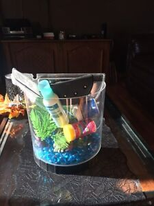Beta fish setup $30