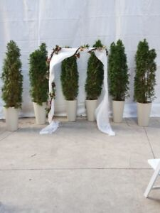 White drapery & flower garlands