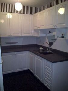 1 Bedroom Beautiful Condo- Quiet Building-All Inclusive AAA++