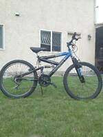 Mountain Bike (Reduced!)