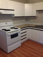 Camrose condo available June 1st.