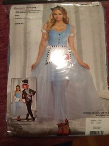 New Hallowe'en Alice costume