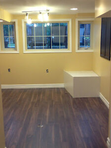 Professional Contractor/Handyman Services by As Good As New Belleville Belleville Area image 3