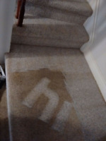 SUPER DEEP CARPET CLEANING EDMONTON,  STRATHCONA