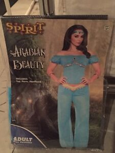 Women's Arabian Beauty Halloween Costume