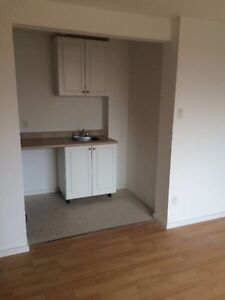 New 1 1/2 Apartments for Rent