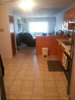 1 Large Bedroom Apt - Downtown Moncton - Avail Sept 1st