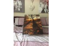 canvas picture good condition