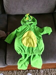 Size 3-6 month Halloween costumes  Kingston Kingston Area image 3