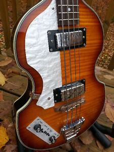 """ LEFT > Rogue Beatle Bass & Case "" (Like New)"