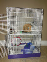 Hamster with Cage and Lots of Accessories