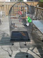 Open Top Parrot Cage + Stand With Wheels & Accessories