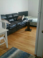 1 1/2 apartment for rent, Newly Renovated, Freshly painted.
