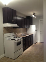 1 Bedroom, newly renovated, avail. July 1