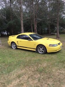 Zinc Yellow 2002 Ford Mustang 3.8L V6