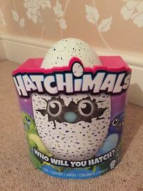 BNIB Hatchimals Draggles Green Egg Interactive Toy RARE No 1 Xmas Toy