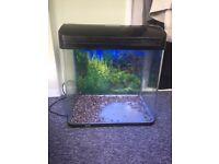 65/70 litre fish tank for sale