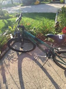 21 speed bike. Kitchener / Waterloo Kitchener Area image 1