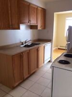 Newly Renovated 1 Bedroom Apartments For Rent