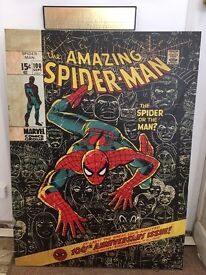Spiderman canvas picture