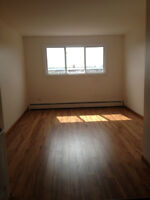AFFORDABLE 1 bdr, close to UDM, on site laundry!
