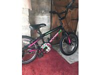 Girls Apollo BMX