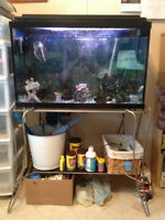 25 gallon aquarium