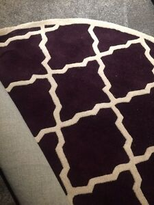 Brand new, mint, area rug.
