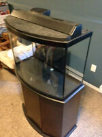 30 Gallon Bow Front Fish Tank with matching stand
