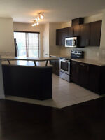 Terwillegar Townhouse SW Edmonton for Rent