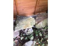 Garden rocks for landscaping FREE to collector