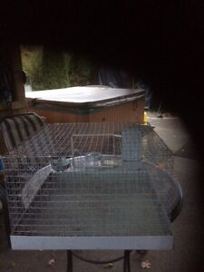 Rabbit Cage  or Ginny pig Peterborough Peterborough Area image 1