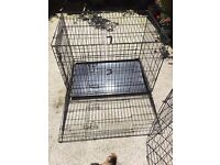 Dog pen and. Play pen for sale