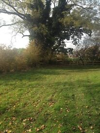 Grazing land to rent suitable for horses in Congleton near to Astbury