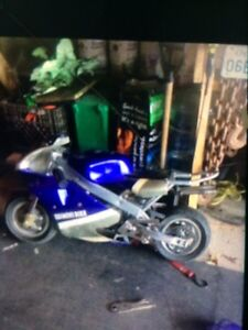 49cc pit bike clean motor toke it off cleaned it  Peterborough Peterborough Area image 1