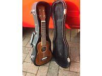 Freshman electro acoustic ukulele