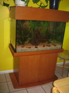 Aquarium 65 gallons