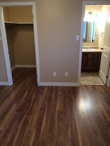 307 Lanark Dr, Paradise, 3 Bedroom, 2 Bath Main Floor House St. John's Newfoundland image 4