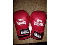 2 x Lonsdale boxing gloves