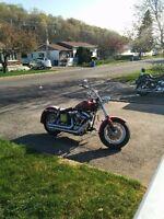 FXWG Harley Davidson Artic