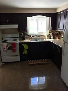 2 Bedrooms Available for 4 month Sublet (May-August)