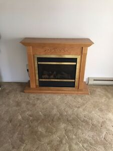 Electric Fire place  Kitchener / Waterloo Kitchener Area image 2