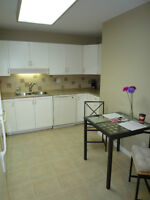 $85 / 2br - 950ft2 - Beautifully Furnished Rental Accommodations