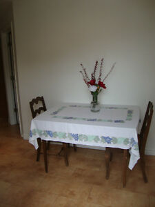 Fully Furnished Apartment Eunice's by the Lake Available Dec 1