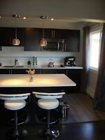 Old Strathcona Furnished 2 Bedroom Executive Condo