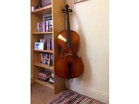 Primavera 200 4/4 Cello outfit