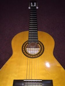 Admira Classical Guitar Kitchener / Waterloo Kitchener Area image 1