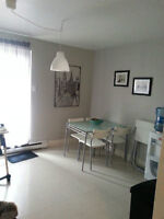 Great, big apartment in Longueuil. Small dogs allowed!